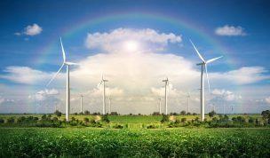 生産緑地に関わる「主たる従事者」とは