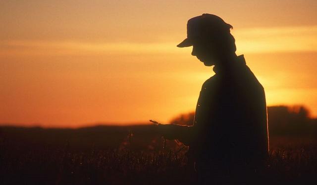 農地の継続届出書の提出忘れに注意が必要(相続税の納税猶予)