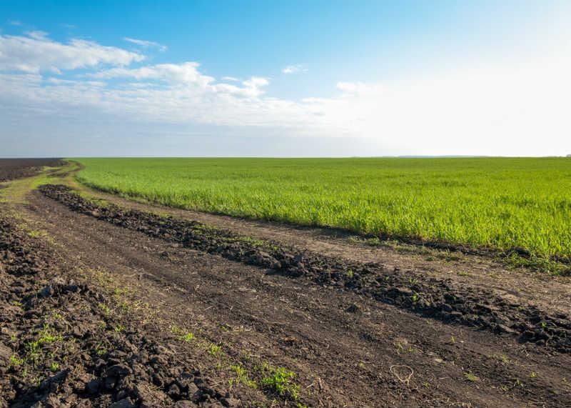 雑種地ってなに? 相続した土地が雑種地の場合の評価方法について